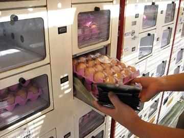 Европа обзавелась автоматами для продажи фермерских продуктов