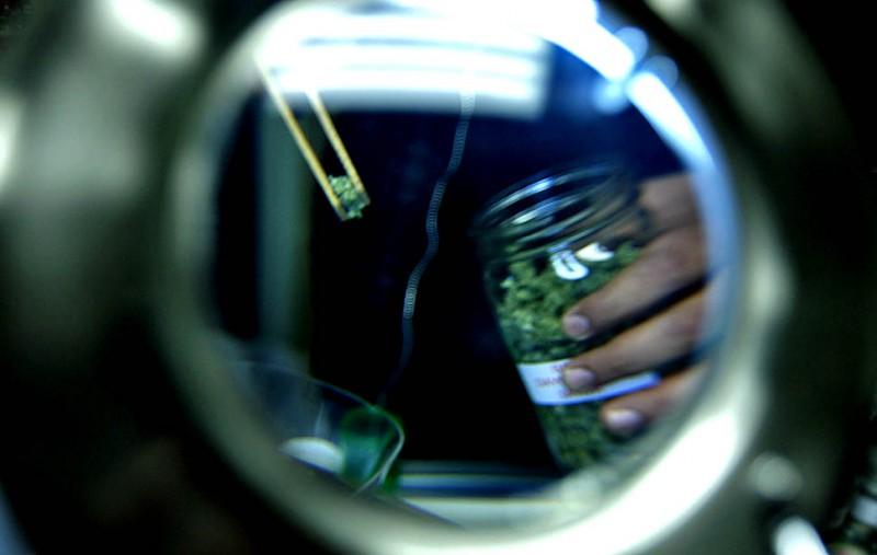 Врачи Израиля против легализации марихуаны в лечебных целях