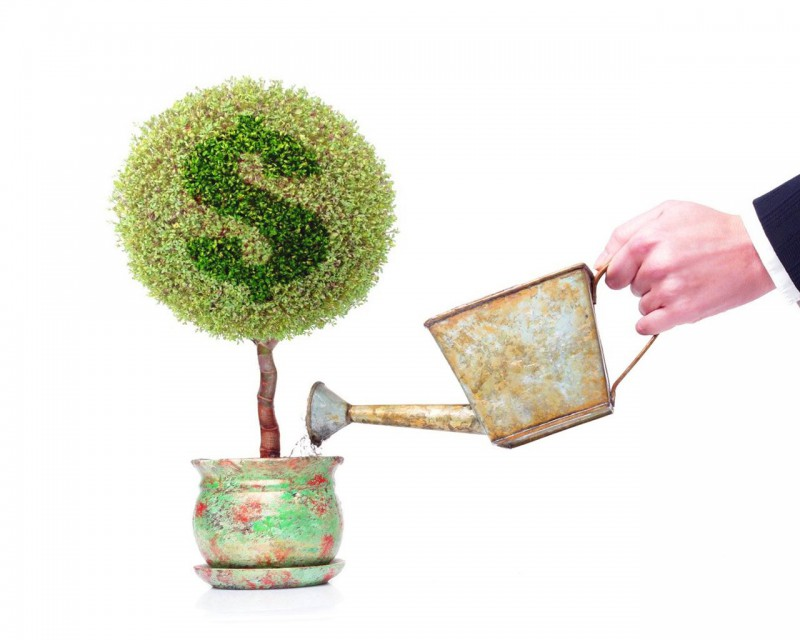 Кредитование частных предпринимателей