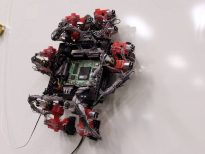 Робот Абигайль