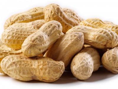 Пищевая аллергия : арахис