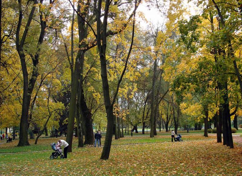 Люди смогли отстоять родной парк