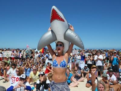 Уничтожение акул. Демонстрация в Перте