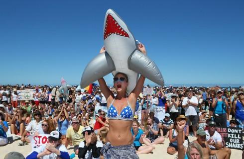 Акулы должны жить!