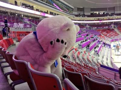 Грустный мишка, который видел своими глазами проигрыш сборной России Финляндии