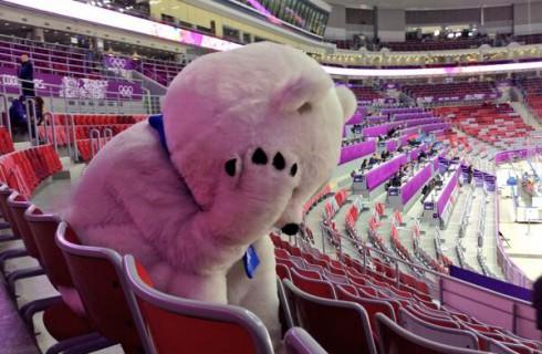 Запомнившиеся моменты Олимпиады в Сочи
