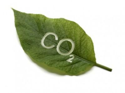 Переработка углекислого газа