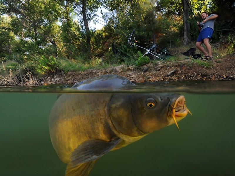 Снасти для рыбалки. Особенности разных моделей