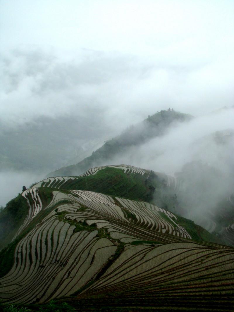 Китай: туда и обратно в поисках отца