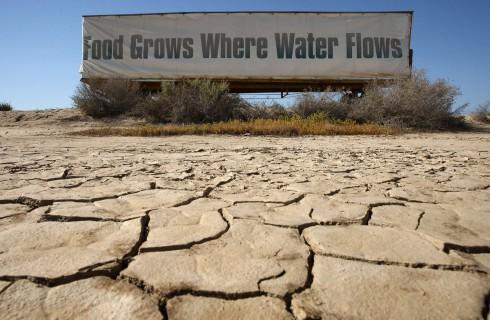 Засуха в Калифорнии дает толчок развитию инноваций