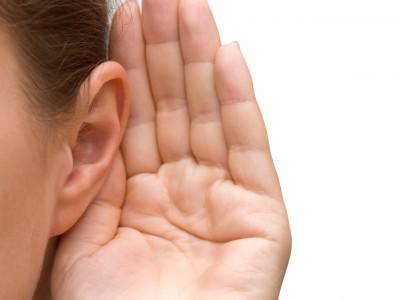Искусственно вырастить ухо — реально