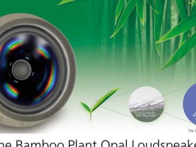 Bamboo Plant Opal Loudspeaker