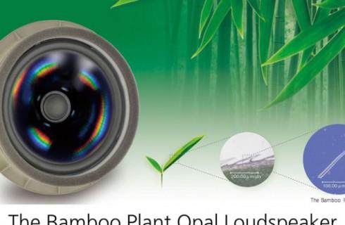 Бамбук пригодится не только пандам