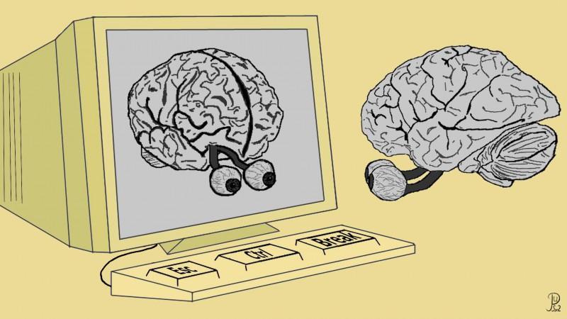 Мозг человека можно загрузить в компьютер