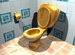 Туалет — альтернативный источник энергии