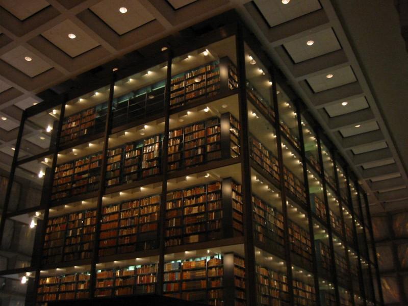 Редкие книги сохранит только интернет