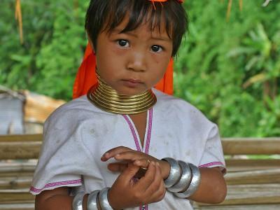 Бирманские кольца