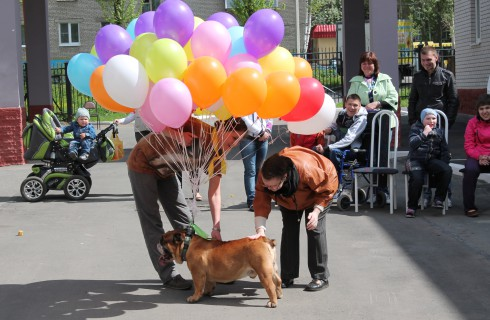 Собаки провели праздник для детей