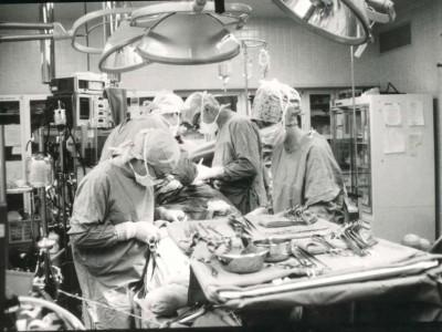 Донорские органы во время операции по пересадке
