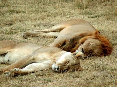 Недостаток сна может негативно отразиться на здоровье