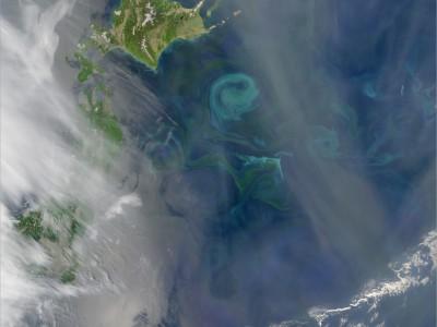 Вихри в океане