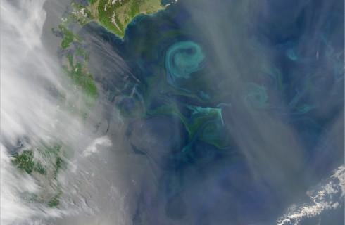 Кто создает гигантские вихри в море?