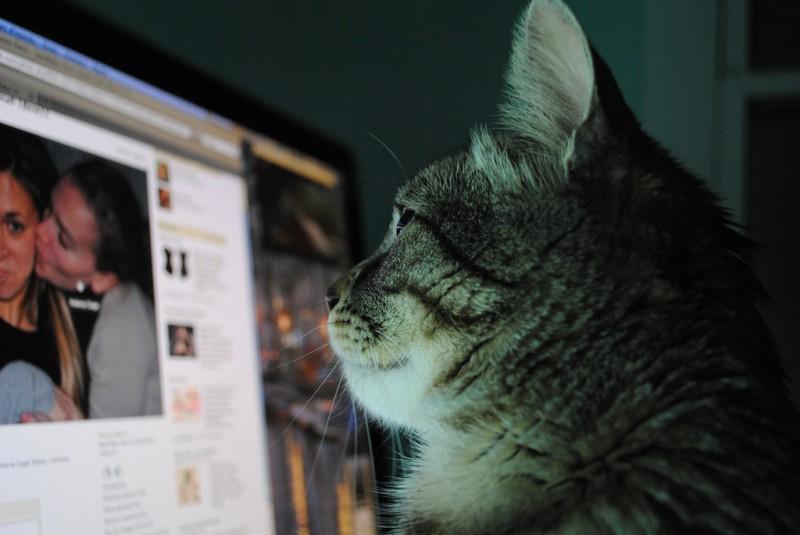 Facebook и Twitter теряют пользователей