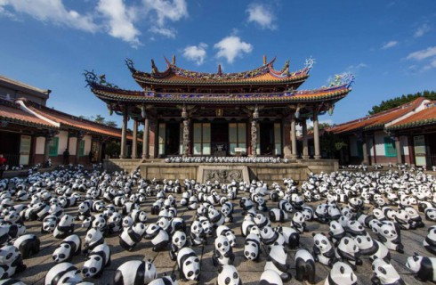 Панды атаковали Гонконг