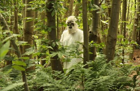 Йети были медведями, а не людьми