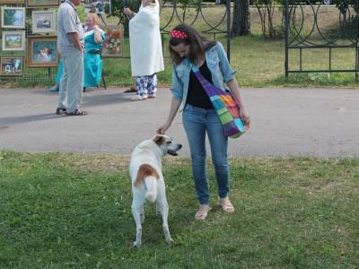 Приветливая собака, которая сама зарабатывает деньги себе на корм