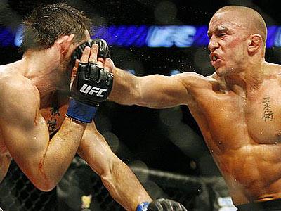 История становления Mixed Martial Arts