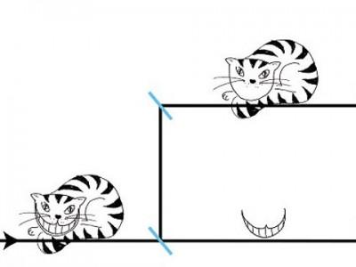 Свойства частиц и тайна «Чеширского кота»