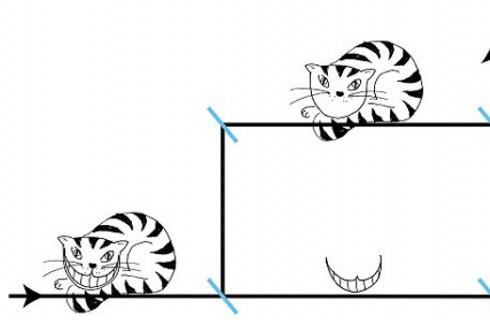 Тайна «Чеширского кота» разгадана