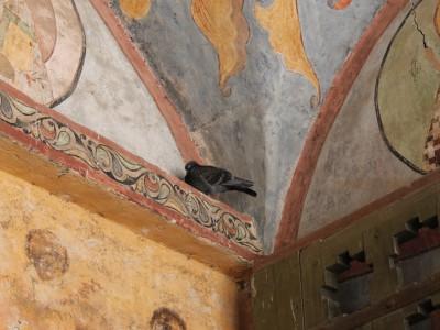 Туристы любуются красотами Святых Врат, а голуби попросту здесь дремлют