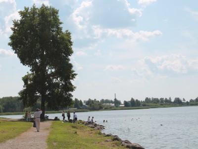 На берегу Сиверского озера отдыхающие купаются с утками