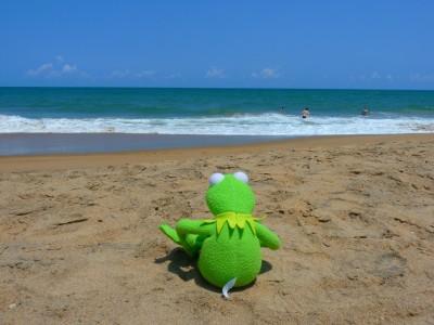 Смартфон нуждается в защите на пляже