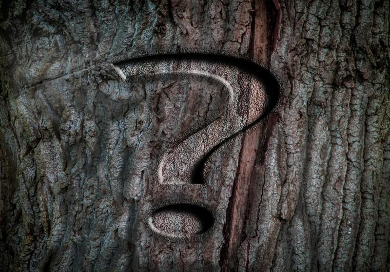 Чем хороша IP-телефония?