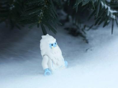 Снежного человека ищут в Подмосковье
