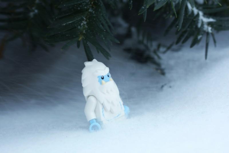 Снежный человек живет под Москвой