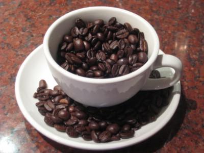 Образованию кофеина предшествовала мутация