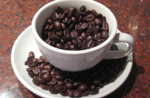 Кофе признали мутантом