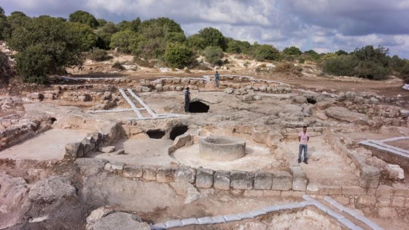 Археологи обнаружили массовое производство масла