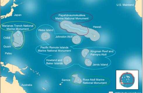 Обама создал огромный охраняемый бассейн в Тихом океане