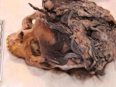Нарощенные пряди — находка археологов