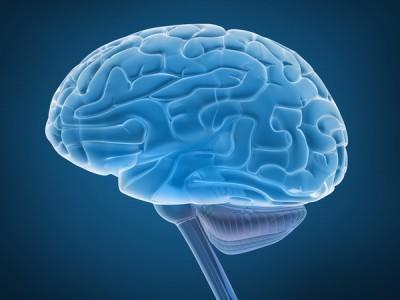 Объем человеческого мозга может зависеть от качества сна