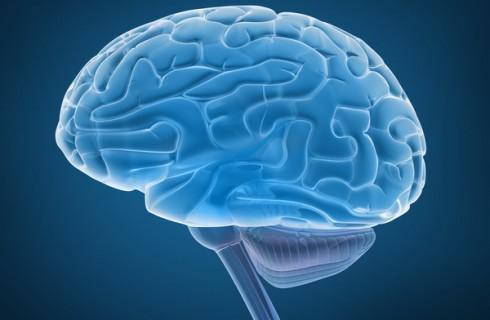 Качество сна влияет на объем человеческого мозга
