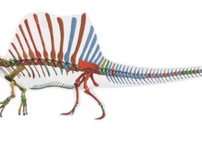 Динозавр спинозавр