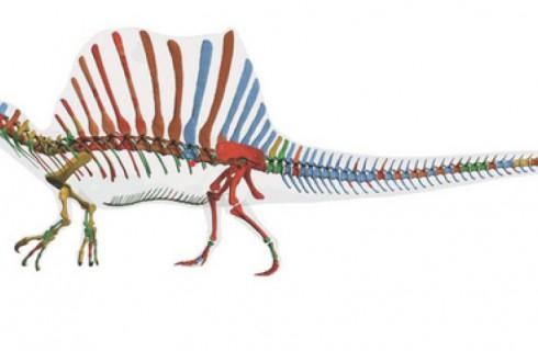 Динозавры были на половину рыбами