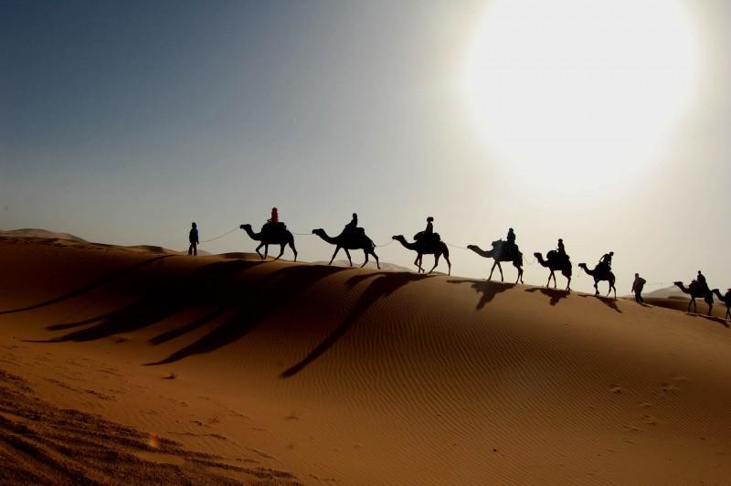 Тайна пустыни Сахара разгадана