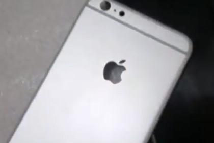 Видео задней панели нового iPhone попало в сеть